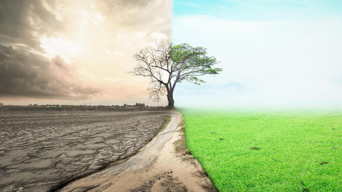 ALL CREATION HAPPENS OUT OF ABUNDANCEMINDSET